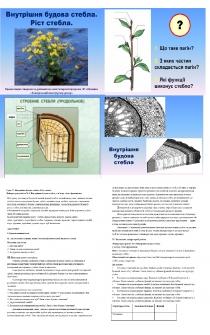 Презентація і конспект до уроку № 17